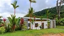 Homes for Sale in Escaleras, Puntarenas $575,000
