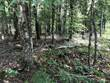 Lots and Land for Sale in Maitland, Nova Scotia $15,000