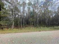 Lots and Land for Sale in Gladwin, Michigan $7,000