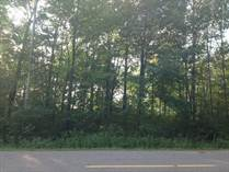 Lots and Land for Sale in Sugar Springs, Gladwin, Michigan $50,000