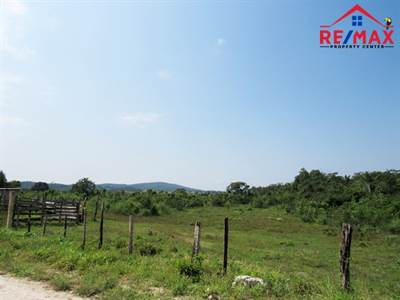 BELIZE 27 ACRE FARMLAND near SPANISH LOOKOUT