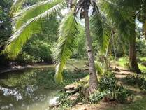 Lots and Land for Sale in Cortez, Puntarenas $6,900,000
