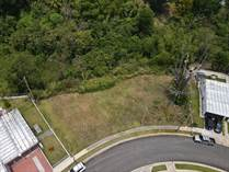 Lots and Land for Sale in San Martin, San Juan, Puerto Rico $83,200