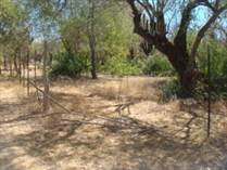 Lots and Land for Sale in Miraflores, Baja California Sur $175,000