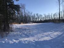 Lots and Land for Sale in Crane Lake, MD of Bonnyville, Alberta $79,900