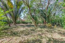 Lots and Land for Sale in Nosara, Guanacaste $107,000