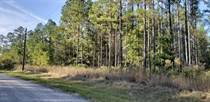 Lots and Land for Sale in Callahan, Florida $44,490