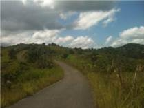 Lots and Land for Sale in Yayales, Adjuntas, Puerto Rico $350,000
