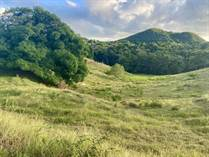 Lots and Land for Sale in Bo. Calvache, Rincon, Puerto Rico $135,000