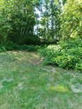 Lots and Land Sold in Shorecrest, Shelton, Washington $20,000