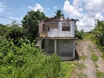Homes Sold in Bo. Malpica, Rio Grande, Puerto Rico $24,900