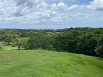 Lots and Land for Sale in Playa Tamarindo, Tamarindo, Guanacaste $249,425