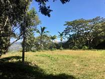 Lots and Land for Sale in Atenas, Alajuela $105,000