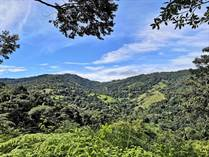 Farms and Acreages for Sale in Platanillo, Puntarenas $350,000