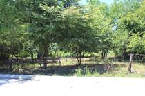 Lots and Land for Sale in Bucerias, Nayarit $169,000