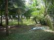 Lots and Land for Sale in Manzanillo, Puntarenas $300,000