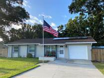 Homes for Sale in Skyview Terrace, Pinellas Park, Florida $254,800