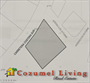 Homes for Sale in South Hotel Zone, Cozumel, Quintana Roo $275