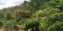 Lots and Land for Sale in Ojochal, Puntarenas $34,900