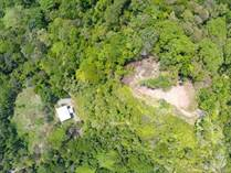 Lots and Land for Sale in Tres Rios, Puntarenas $599,000