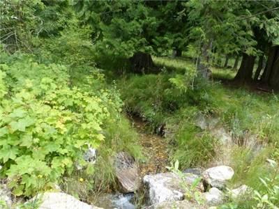 Lot 3-16521 Crawford Creek Road