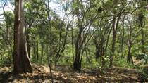 Lots and Land for Sale in Tarcoles, Puntarenas $70,000