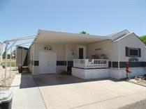Homes for Sale in Pueblo El Mirage, El Mirage, Arizona $62,500
