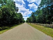 Lots and Land for Sale in Florida, St Johns, Florida $25,000