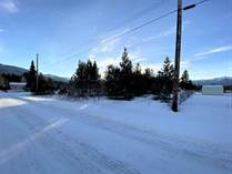 Lots and Land for Sale in Valemount, British Columbia $69,000