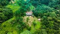 Homes for Sale in Ballena, Puntarenas $365,000