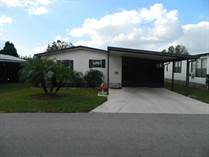 Homes for Sale in Beacon Terrace, Lakeland, Florida $19,900