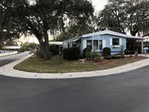 Homes for Sale in Island In The Sun, Clearwater, Florida $43,500