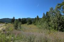 Lots and Land for Sale in S.E. Salmon Arm, Salmon Arm, British Columbia $1,499,000