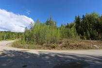 Lots and Land for Sale in Eagle Bay, British Columbia $102,900
