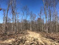 Lots and Land for Sale in Pikeville, Tennessee $90,000