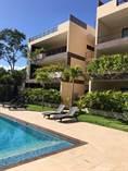 Homes for Sale in La Veleta, Tulum, Quintana Roo $230,000