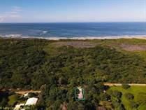 Commercial Real Estate for Sale in Avellanas, Guanacaste $159,000
