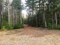 Homes for Sale in Mercer, Wisconsin $35,000