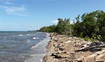 Lots and Land for Sale in Sapodilla Lagoon, Belize $5,000,000