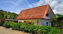 Homes for Sale in Manuel Antonio, Puntarenas $300,000