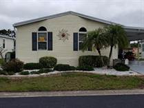 Homes for Sale in Riverside Club, Ruskin, Florida $75,900