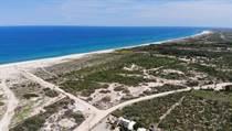 Homes for Sale in Four Seasons Resort, La Ribera, Baja California Sur $19,240,000