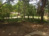 Lots and Land for Sale in Cristo Rey Road, Cristo Rey, Cayo $100,000