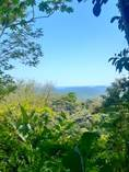 Lots and Land for Sale in Naranjito, Quepos, Puntarenas $325,000