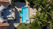 Homes for Sale in Punta Cana Resort & Club, Punta Cana, La Altagracia $1,790,000