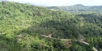 Lots and Land for Sale in Cortez, Puntarenas $48,900