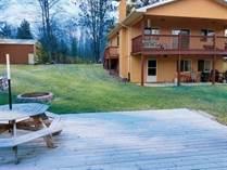 Homes for Sale in Gladwin, Michigan $167,500