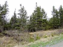 Lots and Land for Sale in South River, Newfoundland and Labrador $18,900