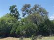 Lots and Land for Sale in Spring Branch, Texas $138,000