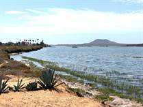 Homes for Sale in San Quintin Bay, San Quintin, Baja California $165,000